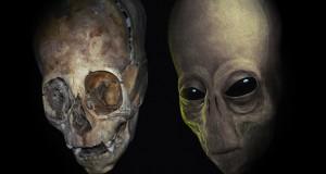 cranio extraterrestre - To no Cosmos