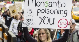 monsanto manifestante - To no Cosmos
