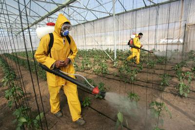 pesticidas - To no Cosmos