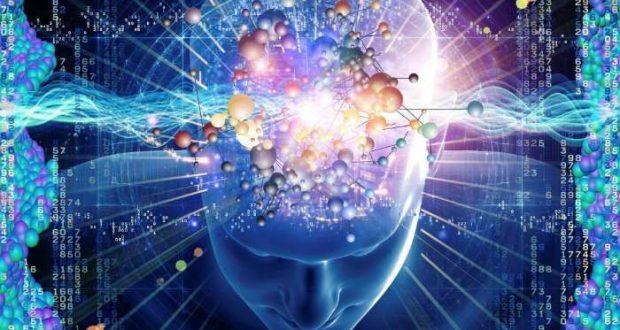 o-cerebro-2-aguas-do-mar