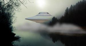 ufo-floresta