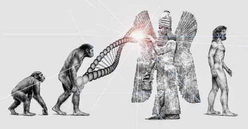 Mankind-Human-Species-Missing-Link-the-Anunnaki