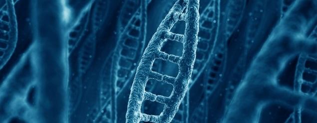 Genes1 - To no cosmos