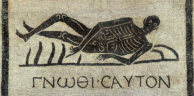 mosaico esqueleto - To no Cosmos